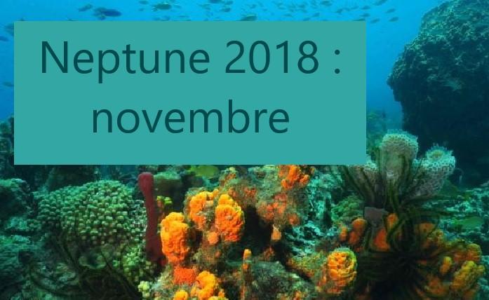 Coupe Neptune 2018