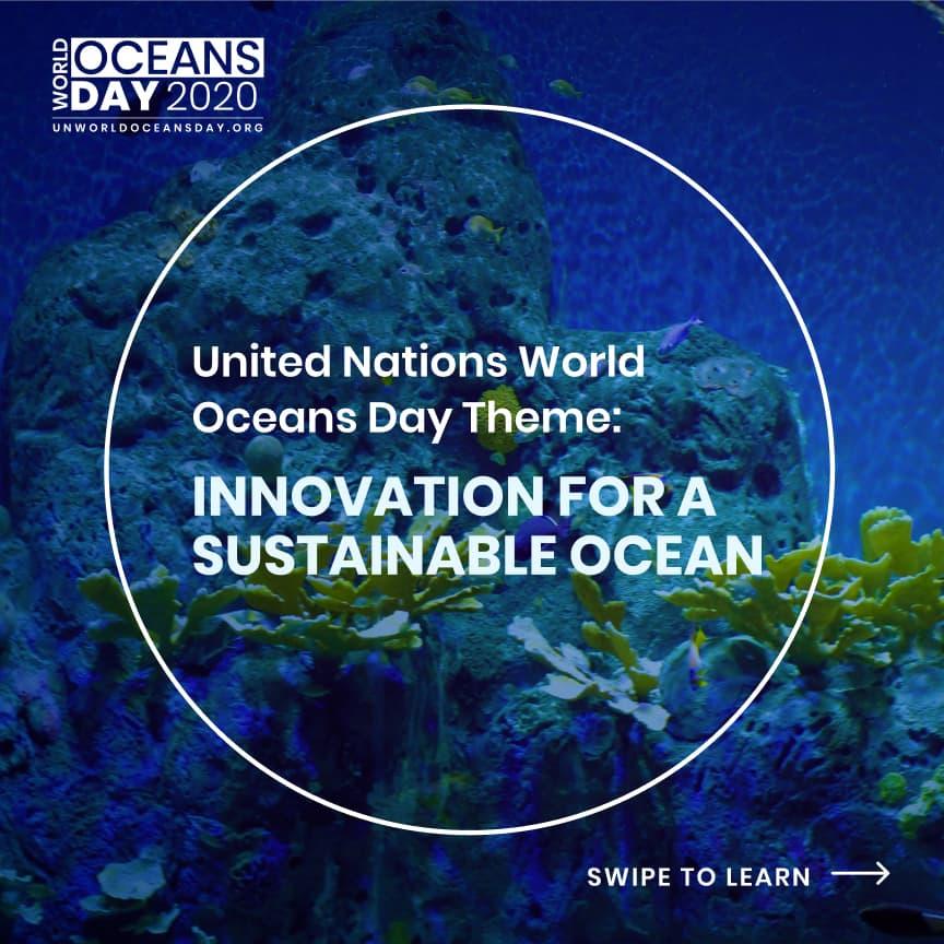 Retour sur : le 8 juin et la journée mondiale de l'océan